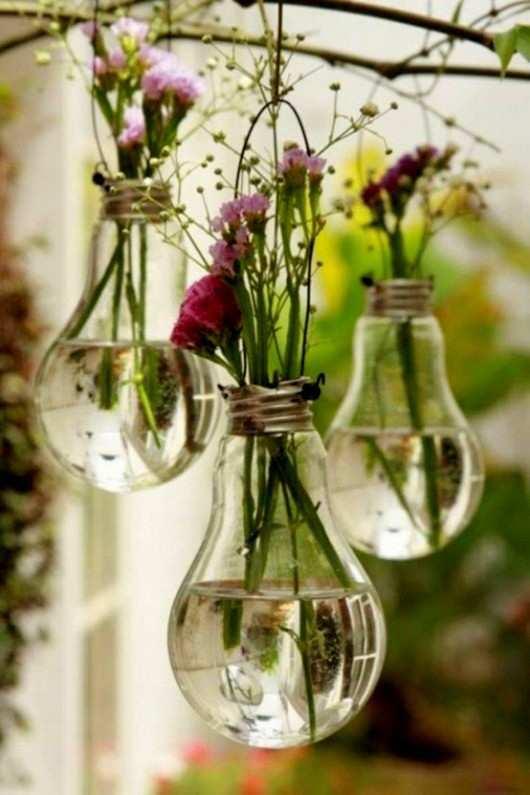 hanging bulb plants