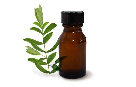 Tea-tree-oil-for-nail