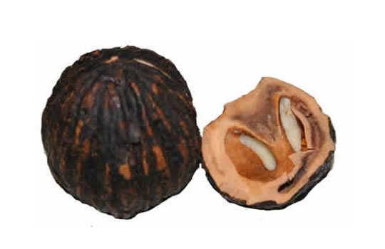 age-spot-home-remedies-black-walnut