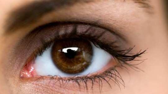Eye-Sight
