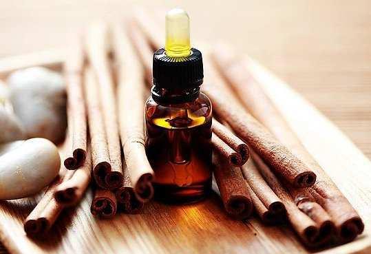cinnamonl-oil