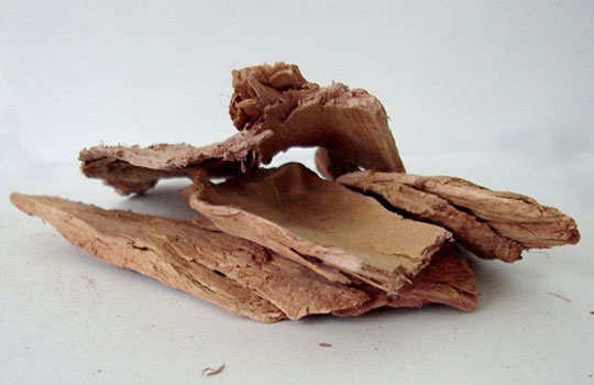 heat-rashes-home-remedies-banyan-tree-bark