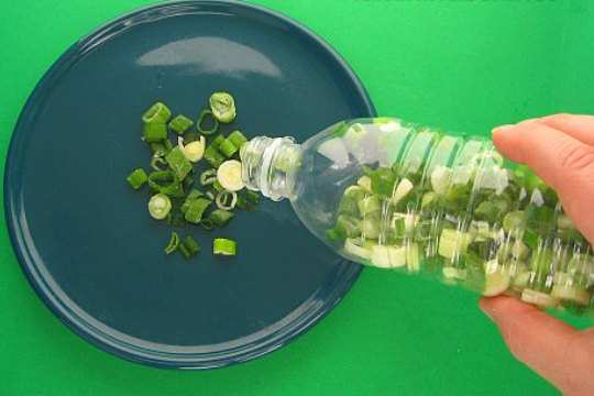 keep-green-onion-fresh