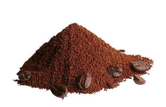 lizards-home-remedies-coffee-powder