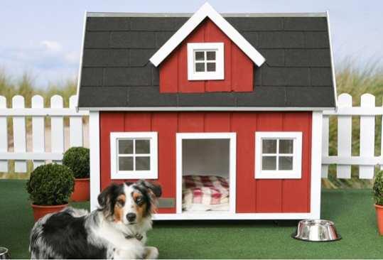 Farm-Dog-House