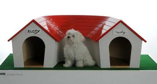 Marco-Morosini-dog-house3