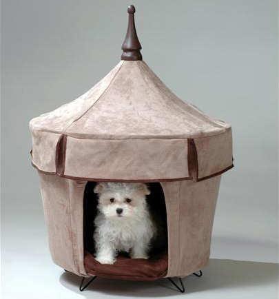 Pet-Tent-Cafe