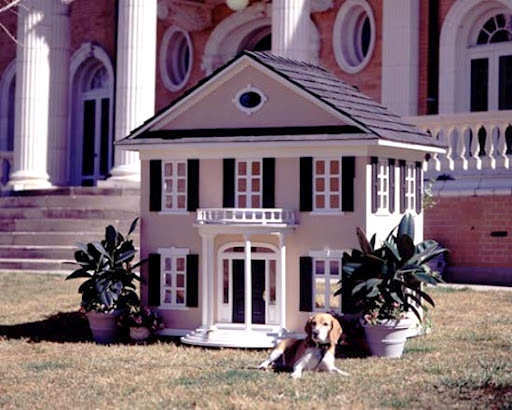 celebrity-white-colonial-dog-house