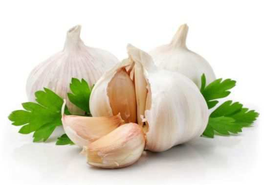garlic-for-high-bp