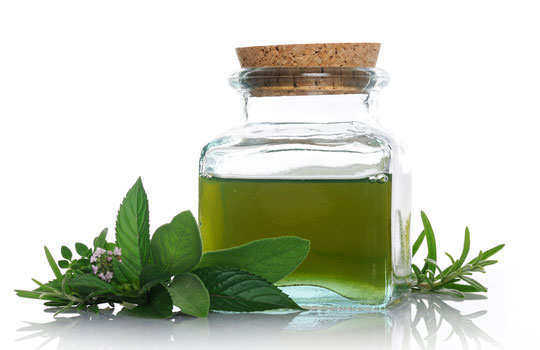 cockroaches-home-remedies-mint-oil