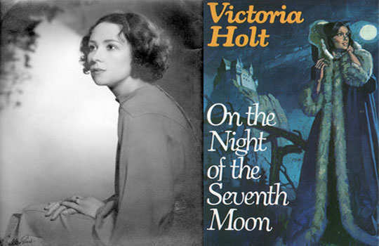 romantic-novels-on-the-night-of-seventh-moon