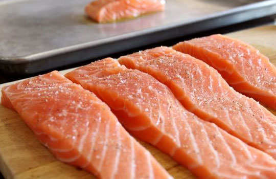 human-foods-that-dog-can-eat-salmon