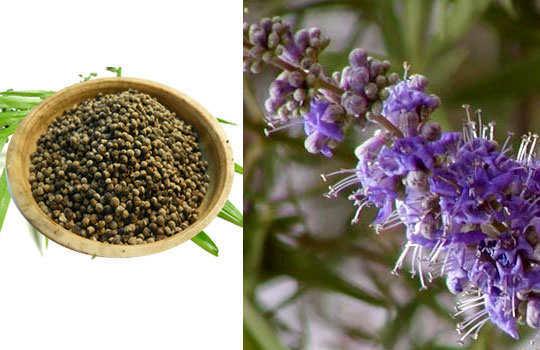 menopause-home-remedies-chaste-tree-berries