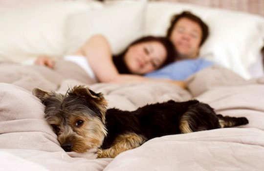 snoring-home-remedies-10