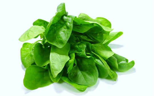 13-foods-to-keep-you-hydrated-spinach